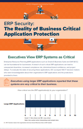 ERP Security: The Reality of Business Critical Application Protection